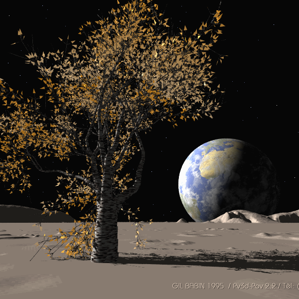 tree on the moon